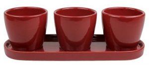 Threshold Ceramic Herb Trio Planter ($14.99, Target)