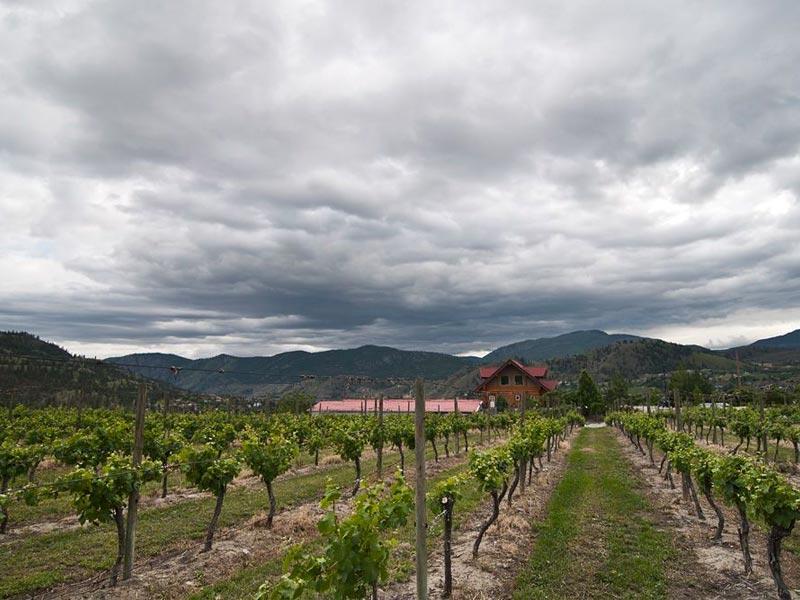 best okanagan wineries, okanagan winery, okanagan vineyards, Mission Hill winery, blasted church winery, Kelowna winery, Kelowna winery to visit