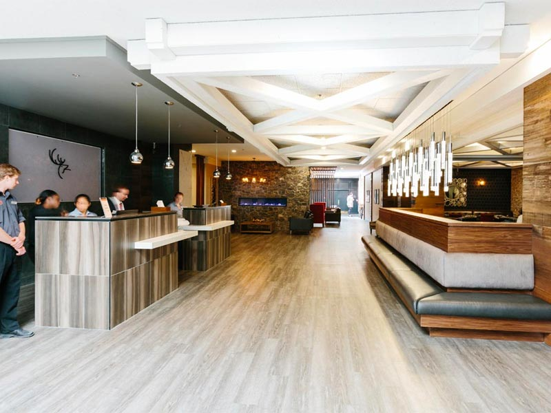 where to stay in banff, banff hotels, group hotels, hotels for groups in banff, ski trip hotels in banff, elk and avenue banff, pursuit hotels banff, pursuit banff jasper collection, canadian rocky mountain hotels