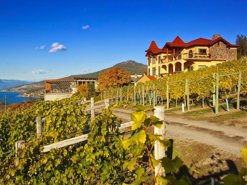 best okanagan wineries, okanagan winery, okanagan vineyards, Mission Hill winery, grey monk estate winery, Kelowna winery, Kelowna winery to visit