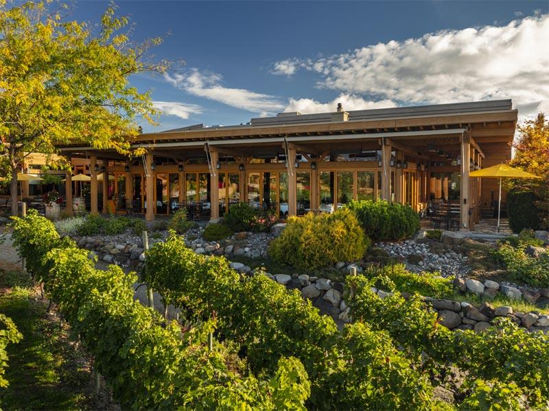 best okanagan wineries, okanagan winery, okanagan vineyards, Mission Hill winery, quails gate estate winery, Kelowna winery, Kelowna winery to visit
