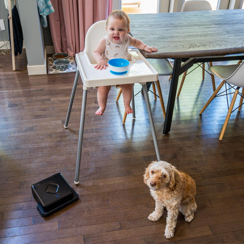 dyson v-11 review, safe cleaning products, non-toxic cleaning, cleaning up after baby, how to clean a high chair, how to clean a play area, sanitizing baby gear, how to sanitize a high chair, how to sanitize baby things, Roomba brava, iRobot mop, iRobot Braava