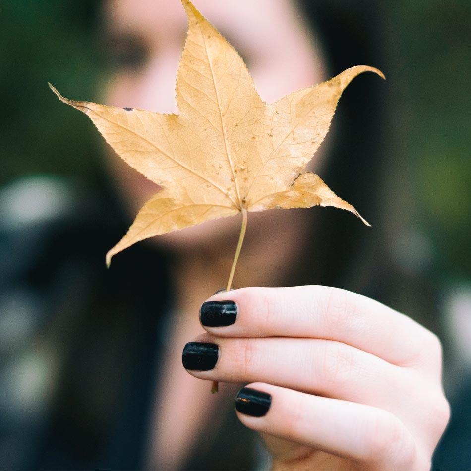 fall nail ideas, fall manicure inspiration, fall manicure inspo, fall manicures, fall nail inspo, simple fall nail ideas